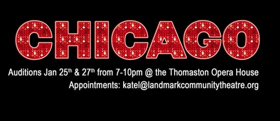 OPEN AUDITIONS - CHICAGO Jan 25th & 29th  7-10pm