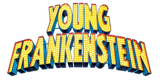 Young Frankenstein is cast!